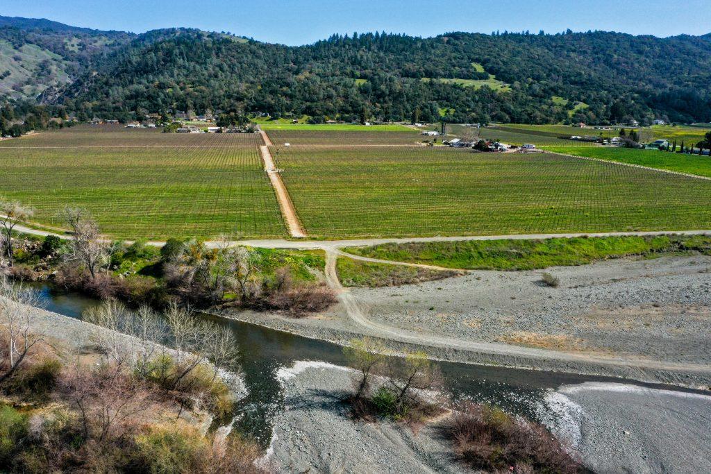 Bellavista Ranch vineyards looking east over Sulphur Creek in foreground.